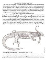 Lezard-autophage-scaled