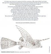 Poisson-coffre-volant-scaled